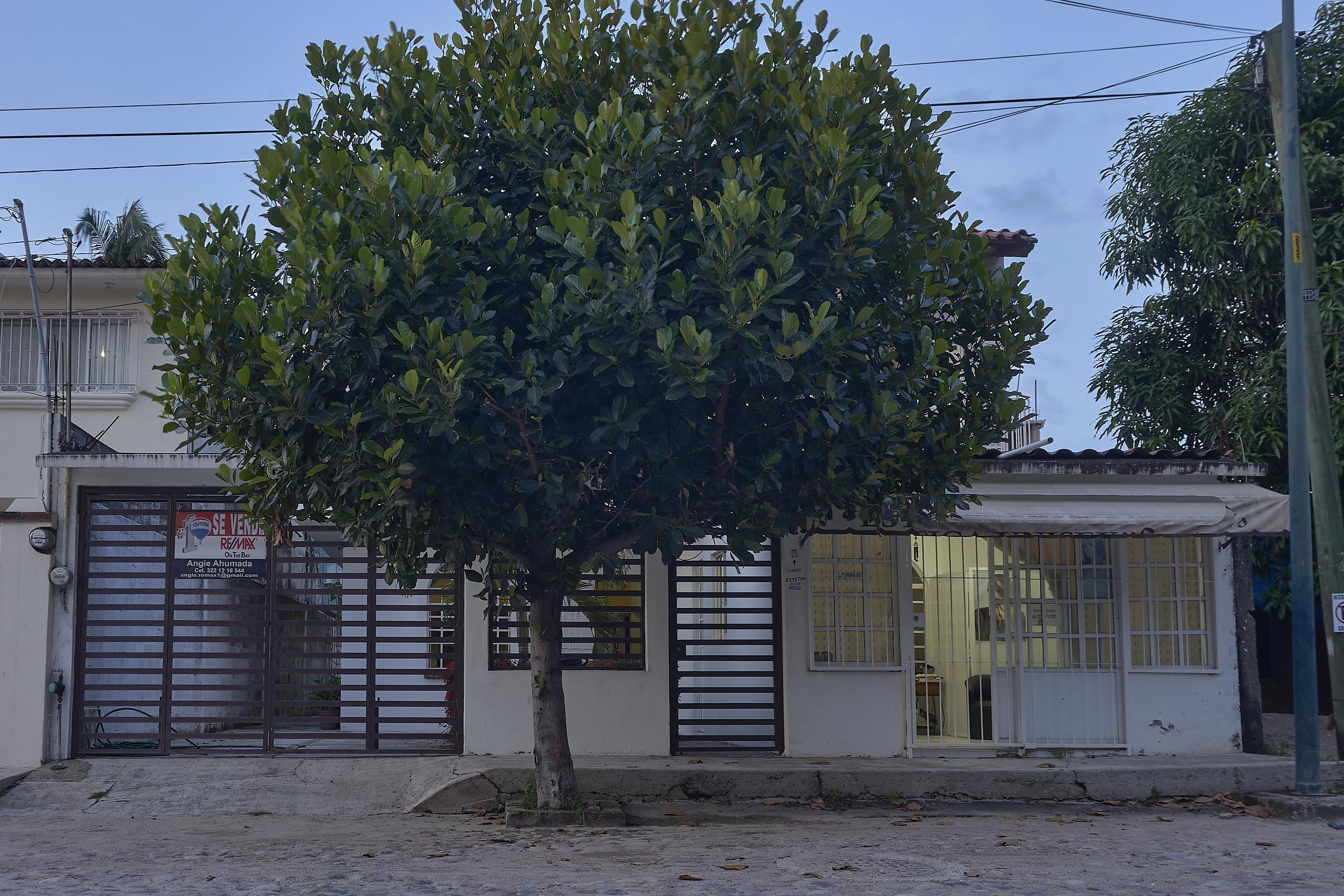 Fotografo--Puerto-Vallarta-Jalisco--Alex-y-Rebeca-Fotografía--Inmobiliaria--Remax--Bucerias--Nayarit--Interiorismo--Ange-Ahumado--Airbnb--Propiedades--JPEG sRGB 1